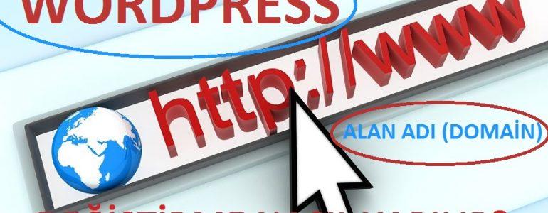 SEO Kaybetmeden Wordpress Sitede Alan Adı Değişimi