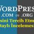 Wordpress.com ve Wordpress.org Hangisi Tercih Edilmeli